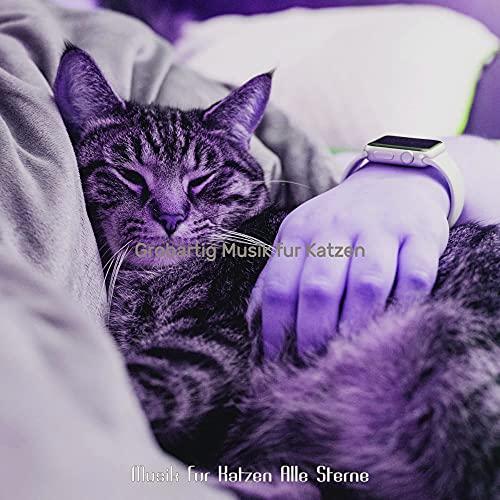 Beruhigende Schlafende Katzen (Ambiente)