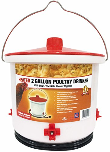 Farm Innovators Heated 2 Gallon Poultry Drinker