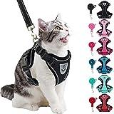 Best Cat Harnesses - PUPTECK Cat Harness and Leash Set- Adjustable Vest Review