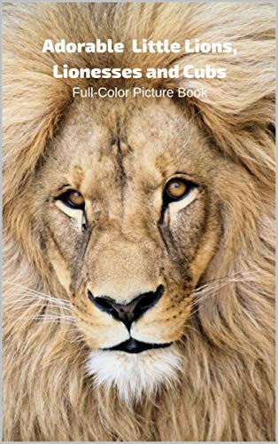 Adorable  Lion, Lionesses and Cubs Full-Color Picture Book: Lion Picture Book for Children, Seniors and Alzheimer's Patients (English Edition)