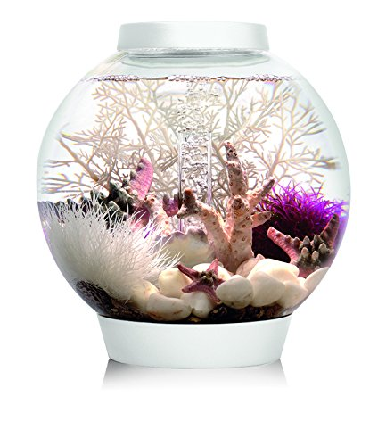 OASE biOrb CLASSIC 15 LED Kugel-Aquarium, 15 Liter - Aquarien Komplett-Set mit LED Beleuchtung und patentiertem Filter-System, Acryl-Becken in Weiß