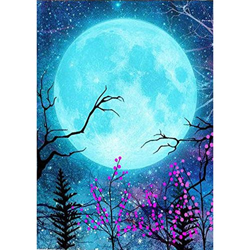 Diamond Painting Kits for Adults Full Drill Embroidery Cross Stitch Arts Craft 5D DIY Full Drill Diamond Painting Moon Embroidery Mosaic Craft Kit (LD114)