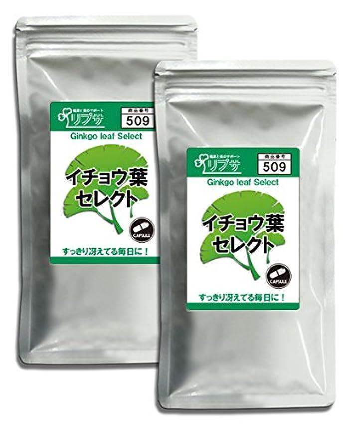 ジェスチャーソース脈拍イチョウ葉セレクト 約3か月分×2袋 C-509-2