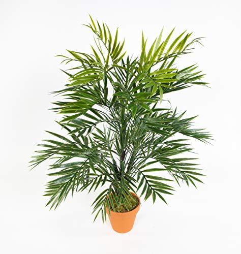 Seidenblumen Roß Zimmerpalme/Palmenbusch 60cm im Topf GA aus Kunststoff Kunstpflanzen Kunstpalmen künstliche Blumen Pflanzen Palme Dekopalme im Topf