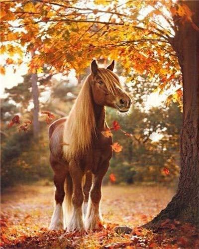 Pintura por números imágenes de caballos sin marco pintura al óleo por números Kit de pintura de animales lienzo decoración del hogar A17 40x50cm
