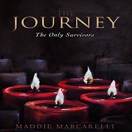 The Journey: The Only Survivors audiobook cover art