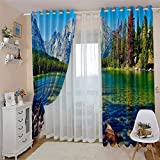 BEDSERG Cortinas decorativas de tela de ventana 3D Cielo, plantas, montañas, lago 204x164cm Anti-moho y reducción de ruido, adecuado para cortinas decorativas de la ventana de la habitación de los niñ