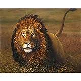 Pintura por números,León macho animal vigilante Decoración del hogar del artista de la pintura al óleo de la lona preimpresa de bricolaje Inicio 40x50cm (Rainbow Pony).