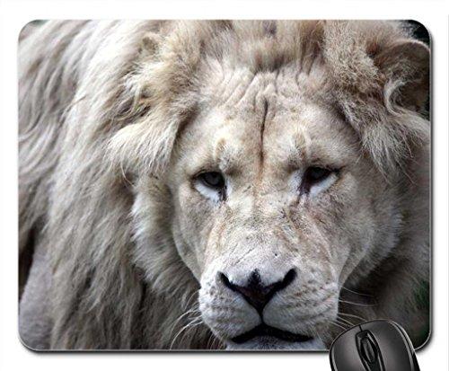 Old Lion Mouse Pad, souris (Cats Mouse Pad)