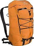 Arc'teryx Alpha AR 20 Backpack (Beacon, Regular)