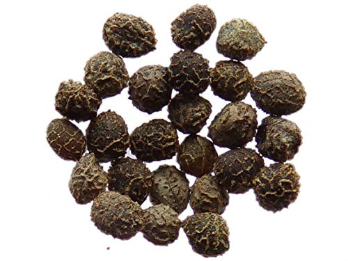 Pavot De Californie - 1 gramme - Eschscholzia Californica - California Poppy - SEM27