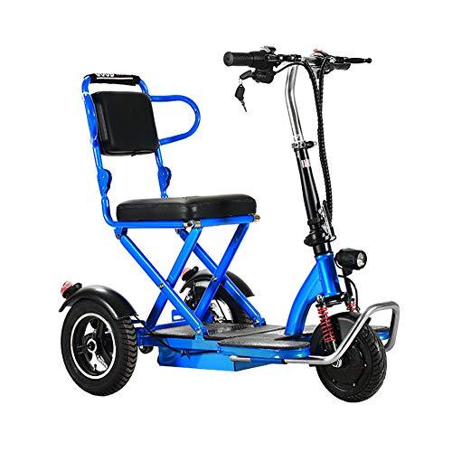 BR Cadre en Acier 3 Roues Mobilité Électrique Scooter...