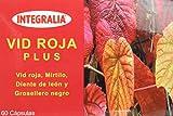 Integralia Vid Roja Plus, 60 Cápsulas