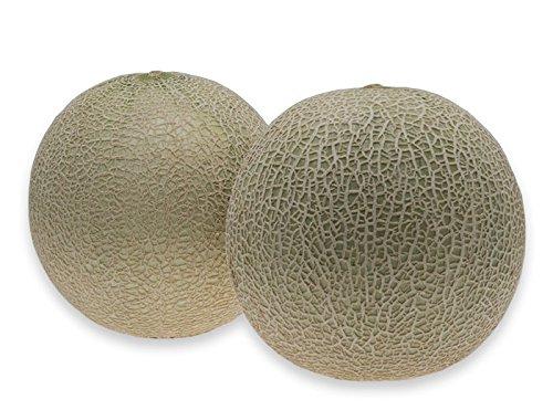 フルーツなかやま 青肉 メロン アンデスメロン<2個入> 重さ900g以上/ 糖度12度以上/大きさ10cm以上
