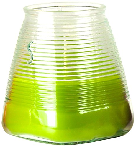 Ivyline s0522100303Citronella Garden Luces con Percha citronela y albahaca–Fresco–Verde