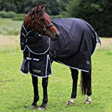 <span class='highlight'><span class='highlight'>Gallop</span></span> Trojan 300g Heavyweight Horse Turnout Rug and Detachable Neck Set Winter (6'6