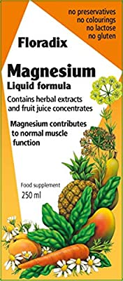 Floradix Magnesium Liquid Mineral Supplement x 1