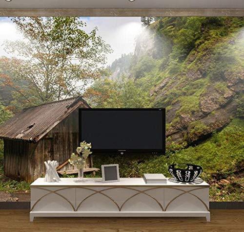 Behang op natuur-wandafbeelding van houten huis 3D voor de woonkamer televisie achtergrond foto papier natuurlijke plantenvezel vliesbehang Natuur 300*210 300 x 210 cm.