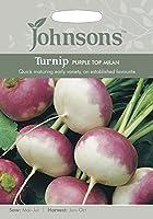 英国ミスターフォザーギルズシード&ジョンソンシード Turnip Purple Top Milan ターニップ・パープル・トップ・ミラン