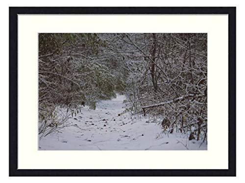 OiArt Wall Art Canvas Prints Wood Framed Paintings Artworks Pictures - Field Covered with Snow Surrounded with Trees (20x14 inch)