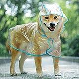 KoKoBin Cappotto Impermeabile per Cani Gatto con Cappuccio, Regolabile PVC Trasparente Poncho Impermeabile Ultraleggero, per Cani di Piccola Taglia(Blu, L)
