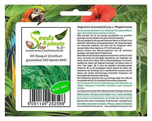 Stk - 500x Dill Bouquet (Anethum graveolens) EKO- Dill Samen Gemüse Kräuter K441 - Seeds Plants Shop Samenbank Pfullingen Patrik Ipsa