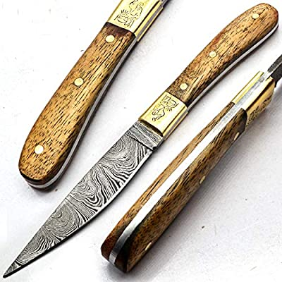 PAL 2000 Damascus Knives - Handmade Damascus Steel Knife - Guaranteed Quality Damascus Steel Mini Chef Knife - Mini Kitchen Knife With Sheath 9725