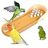 Mothcattl Papageienspielzeug, Pädagogisches Spielzeug für Vögel, Papageien, Holz, Bowlingtisch, Lernspielzeug
