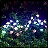 Solarleuchten Garten im Freien - 2 Stck Draussen Weg Dekorative Lampe Leuchtet Solar Landschaft Lichter IP65 Wasserdicht Pfad Rasen Hof Garten Lampen Hübsche Blumenmuster