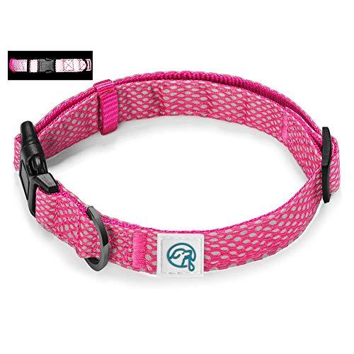 Embark Illuminate Reflektierendes Hundehalsband – Hergestellt mit reflektierendem Material, um Ihr Hundehalsband sichtbar und hell in der Nacht zu machen (klein, rosa)