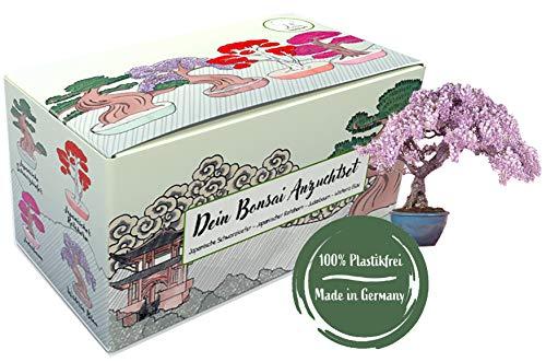 Bonsai Anzuchtset – Bonsai Starter Kit mit 4 Sorten Bonsai Baum Samen, perfektes nachhaltiges Gechenk Set zu jedem Anlass, einzigartiges Geschenk für Frauen und Männer