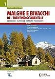 Malghe e bivacchi del Trentino occidentale. Escursioni, alpinismo, ferrate, passeggiate (Vol. 1)