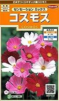 サカタのタネ 実咲花7186 コスモス センセーションミックス 00907186