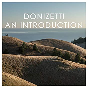 Donizetti: An Introduction