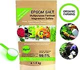 bleu & marine Bretania Abono Ecológico Sales de Epsom (Sulfato de Magnesio) Fertilizante DE MAGNESIO Huerta 1.5 kg