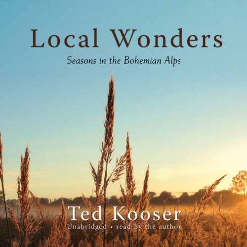 Local Wonders audiobook cover art