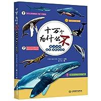 海洋动物:鲸鱼、海豚和海豹·十万个为什么不