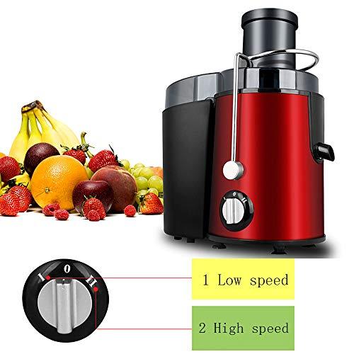 FREETT Licuadoras para Verduras y Frutas/Licuadora Extractor de Zumos Prensado en Frio, Licuadora y Extractor de Frutas y Verduras Potencia con bajo Nivel de Ruido