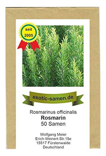 Rosmarin - Bienenweide- Rosmarinus officinalis (50 Samen)