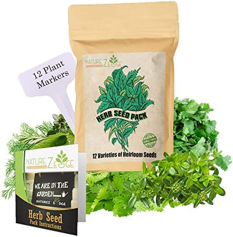 Heirloom Herb Seeds,12 Varieties, Over 10000 Seeds, Basil, Cilantro, Sage, Parsley, Thyme, Oregano, Dill, Chives, Fennel, Chamomile, Caraway, Savory, Non-GMO
