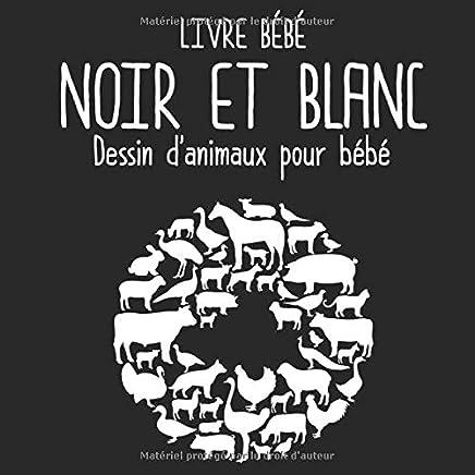 Amazon Com Le Livre Noir Books