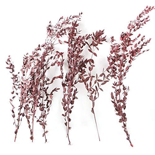 IrahdBowen Eukalyptus Getrockneter Blumenstrauß Eukalyptus blätter Bouquet Ewige Getrocknete Blume Für Natürlich Getrocknete Simulation Bouquet Dekoration Heimdekoration methodical