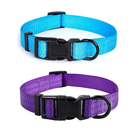 "Mile High Life Hundehalsband, Nylon, reflektierend, drei 3M Riemen, Limettengrün, Hot Blue, Pink, Lila, Rot, X-Small Neck 9""-13"" -20 lb, 2 Stück Hot Blue/Purple"