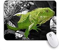 KAPANOUマウスパッド トカゲフローラル爬虫類動物爬虫類学 ゲーミング オフィス最適 おしゃれ 防水 耐久性が良い 滑り止めゴム底 ゲーミングなど適用 マウス 用ノートブックコンピュータマウスマット