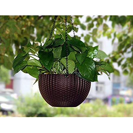 Tex Homz Plastic Plant Pot With Hanging Chain, Multicolour, Medium, 1 Piece