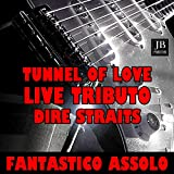 Tunnel of Love (Instrumental Electric Guitar Tributo Dire Straits)