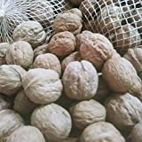 Nueces de California 1000 gr - Nueces con cascara naturales 1 kg