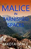 Malice in Tarnished Spaces: A small town police procedural set in the American Southwest (The Pegasus Quincy Mystery Series Book 6)