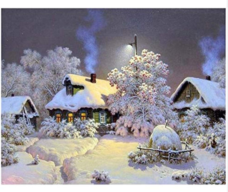 Agolong DIY Malen Nach Zahlen Schnee Landschaft Acrylgemälde Moderne Bild Home Decor Für Wohnzimmer Mit Rahmen 40x50cm B07M5GXGJ3 | Creative