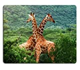 Giraffes family sky savanna animals Mouse Pads Customized Made to Order Support Ready 9 7/8 Inch (250mm) X 7 7/8 Inch (200mm) X 1/16 Inch (2mm) Eco Friendly Cloth with Neoprene Rubber Liil Mouse Pad Desktop Mousepad Laptop Mousepads Comfortable Computer Mouse Mat Cute Gaming Mouse pad